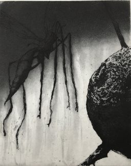 Overgrowth 1 - Ann Norfield