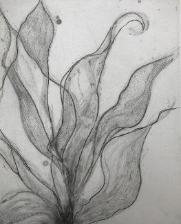 Overgrowth 2 - Ann Norfield