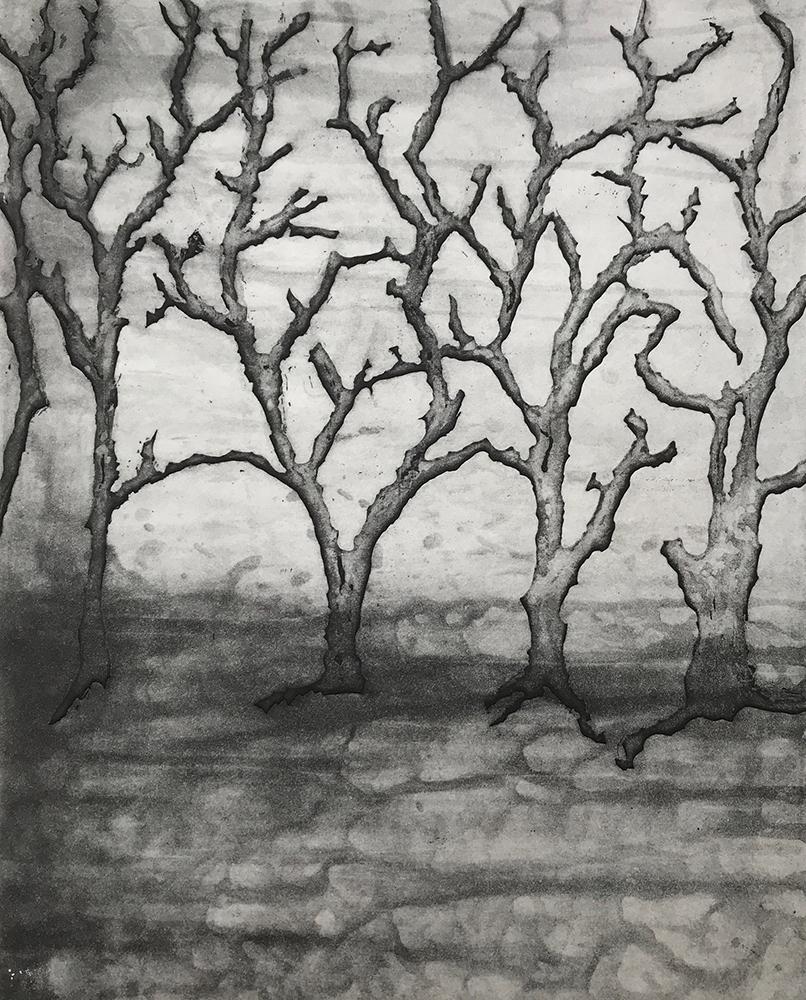 Overgrowth 6 - Ann Norfield