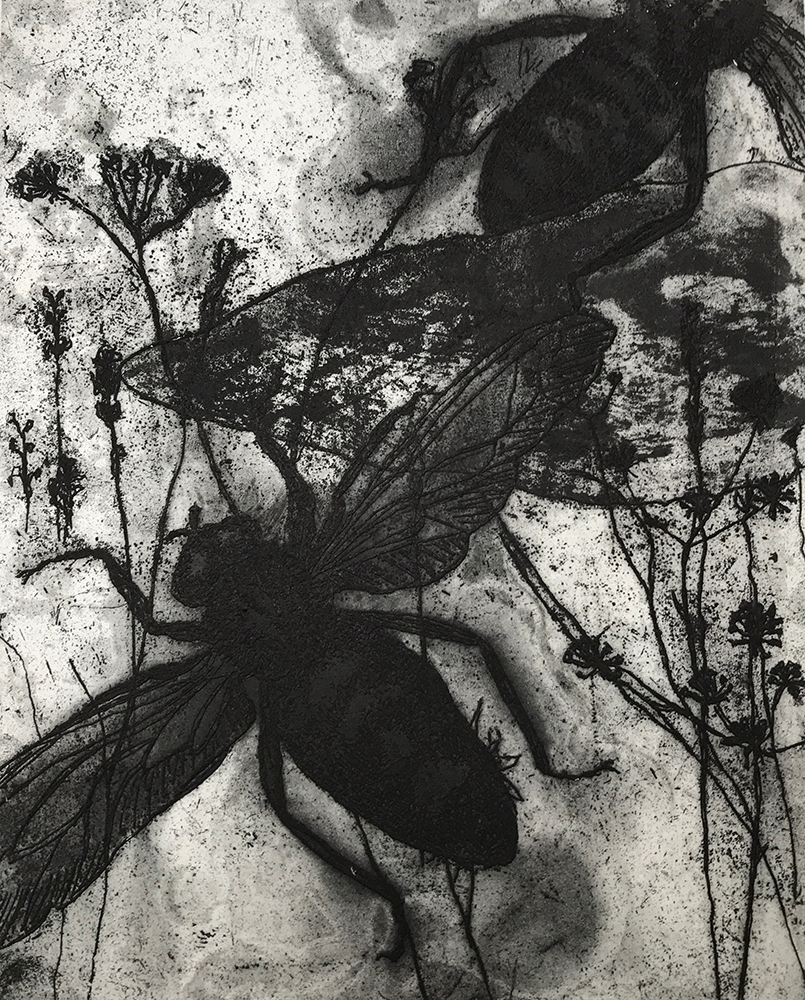 Overgrowth 7 - Ann Norfield