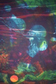 Oriental Mist 3 - Frank Dolphin