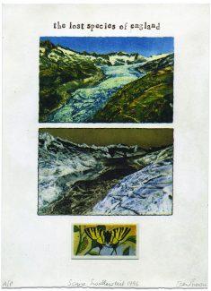 Scarce Swallowtail - Ian Brown RE