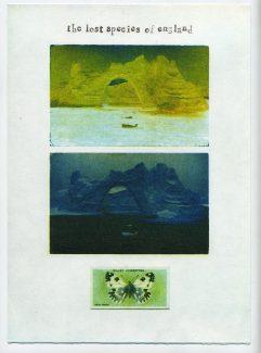 Bath White - Ian Brown RE