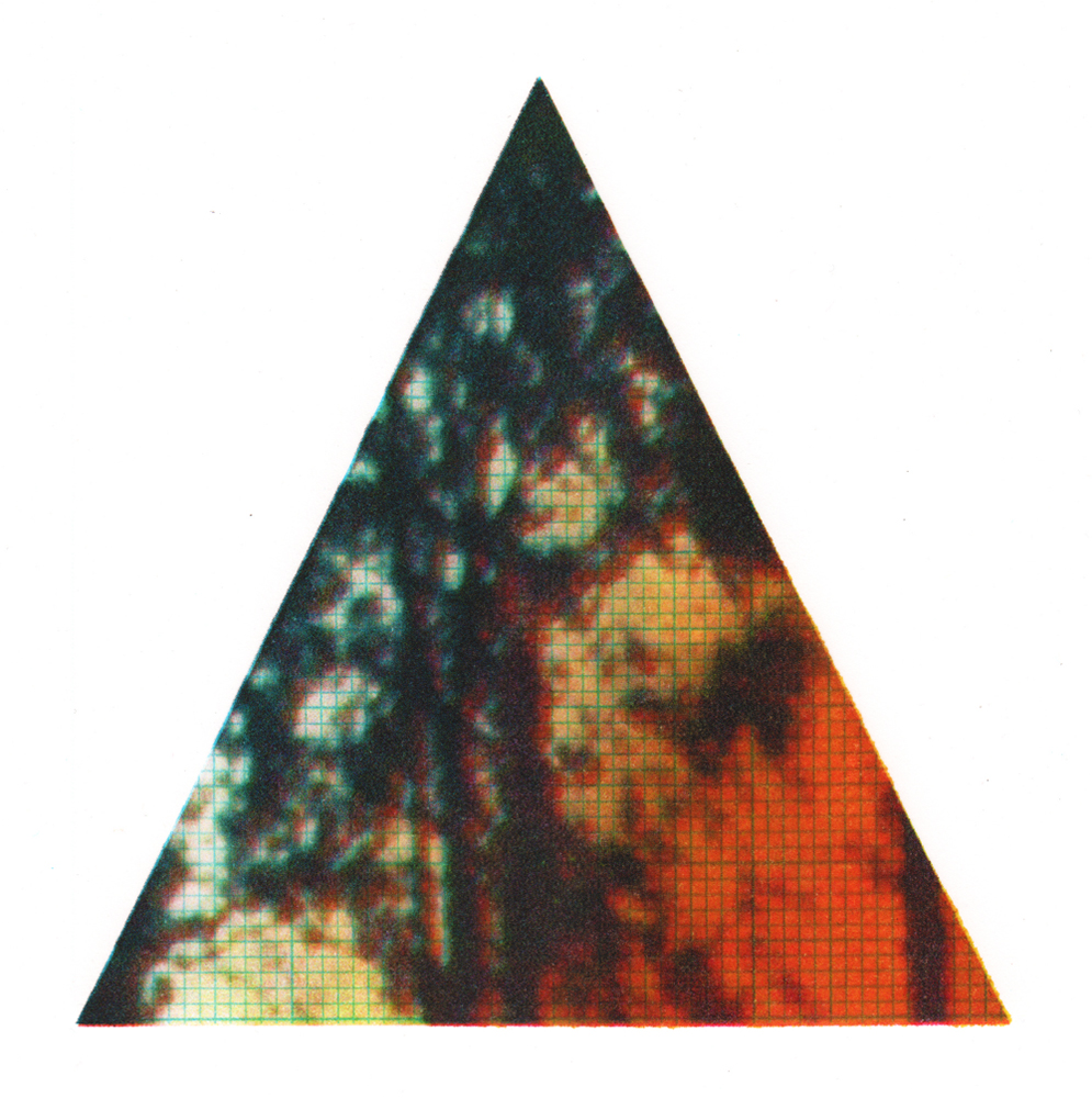 Rust Fade - Livi Mills