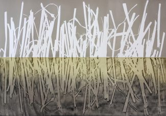 Wetland I a - Susan Turner